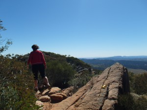 Boven op Mount Olssen in Flinders Ranges National Park